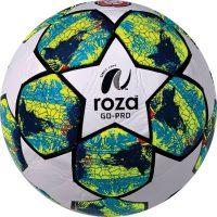 Roza Go-Pro